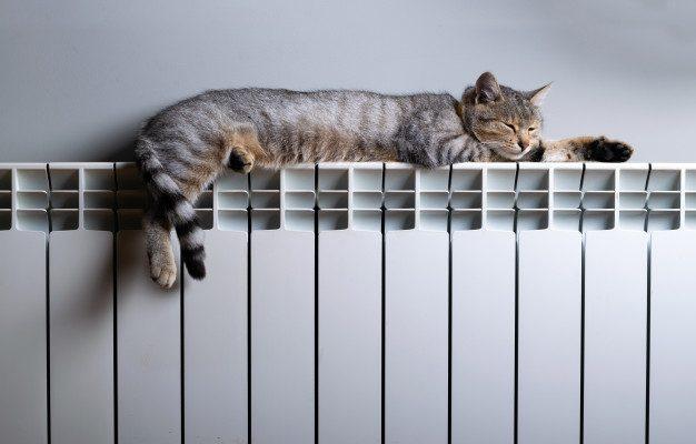 Размер платы за отопление могут пересмотреть