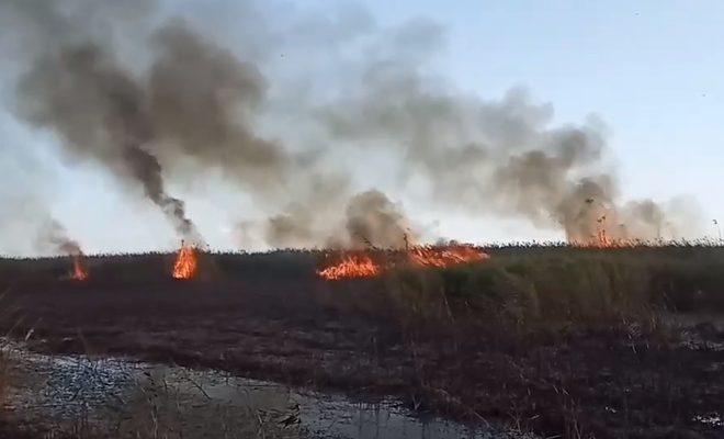 В Астрахани ожидается повышенная пожароопасность