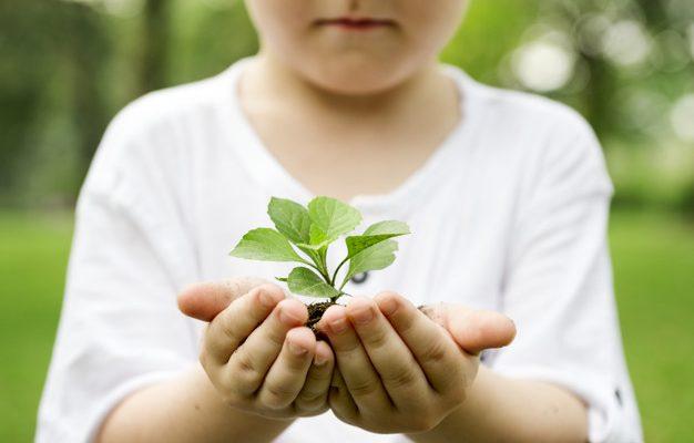 5 июня День эколога и защиты окружающей среды