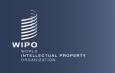 Астраханцы смогут принять участие в вебинаре, посвящённом международной патентной системе