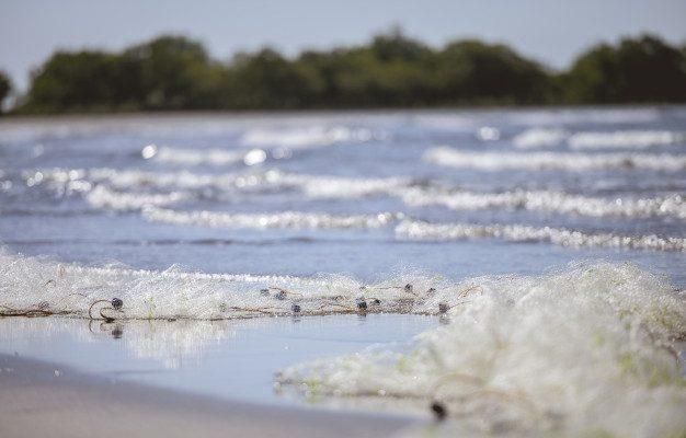В Астрахани на рыбака завели уголовное дело