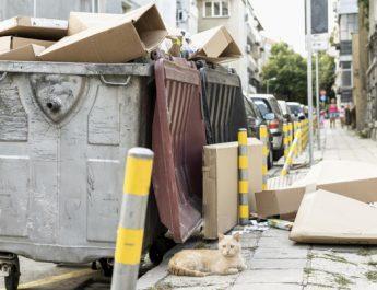 """В России хотят провести """"мусорную реформу"""""""