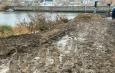 грязь зацаревье