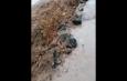 грязь на улицах Астрахани