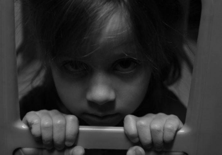 проект изъятие детей