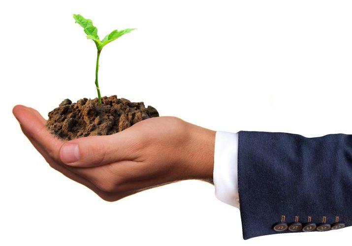 экологчиеская продукция