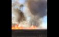 В Астраханском заповеднике спасатели продолжают тушить крупный пожар