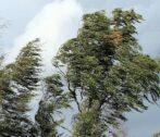 шквалистый ветер