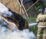 В Астраханской области на площади 5000 кв. метров сгорели сено исухостой
