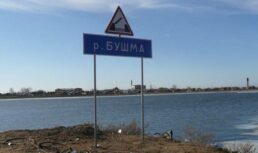 незаконный мост бушма